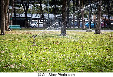 Automatic sprinkler watering in the garden