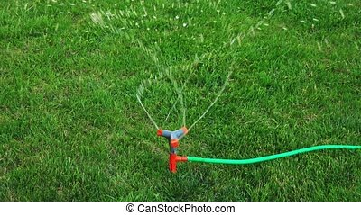 Automatic Sprinkler working on green lawn slomo shot