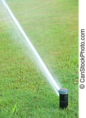 automatic watering system grass