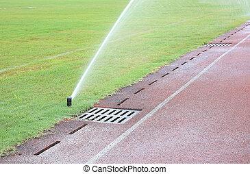 automatico, irrigazione, verde, sistema
