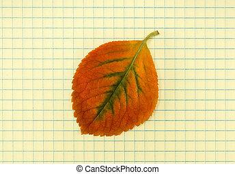 automne, école, cahier, feuille