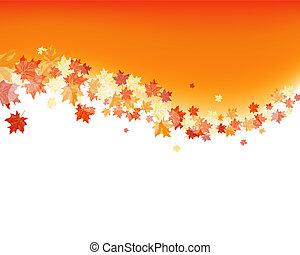 automne, érables