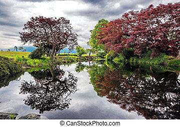 automne, étang, parc