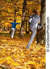 automne, étirage, parc