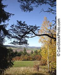 automne, 2, paysage, branche
