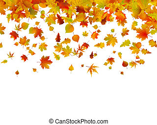 automne, 8, leaves., fond, eps