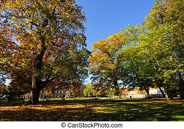 automne, allemagne, erlangen