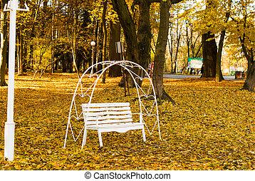 automne, amants, garez banc