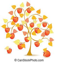 automne, arbre, pomme, jaune