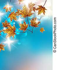 automne, arrière-plan., coloré