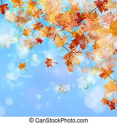 automne, arrière-plan., résumé, eps, 10