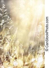 automne, art abstrait, fond, nature