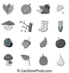 automne, articles, icônes, ensemble, monochrome
