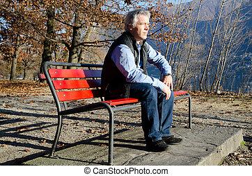 automne, banc, séance homme
