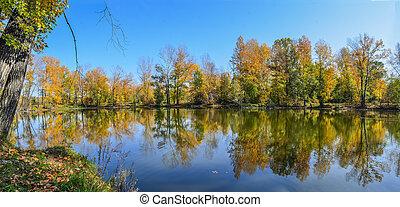 automne, beauté, paysage, lac, automnal, -, nature, coloré