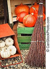 automne, boîte, potirons