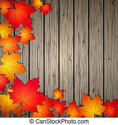 automne, bois, feuilles, sur, arrière-plan.