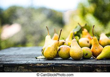 automne, bois, poires