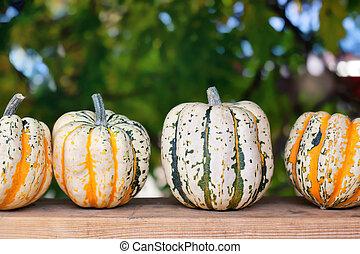automne, bois, potirons, planche
