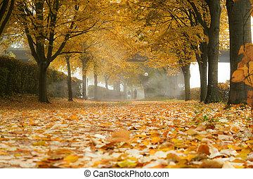 automne, brouillard, ruelle