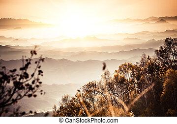 automne, brumeux, porcelaine, paysage