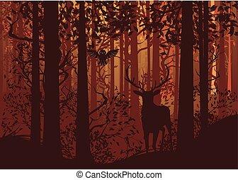 automne, cerf, forêt, paysage