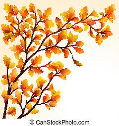 automne, chêne, branche