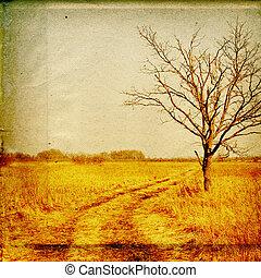 automne, chêne, papier, vieux