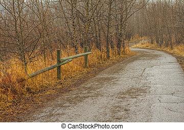 automne, chemin