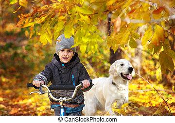 automne, chouchou, promenade