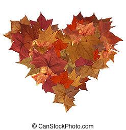 automne, coeur, feuilles, isolé