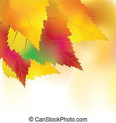 automne, coloré, fond