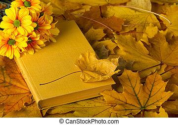 automne, composition, livre, feuilles