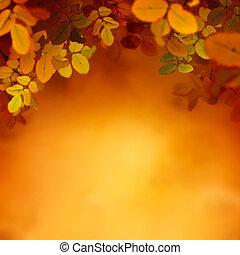 automne, conception, fond