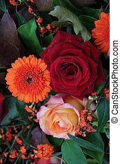 automne, couleurs, arrangement fleur