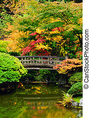 automne, couleurs, assorti