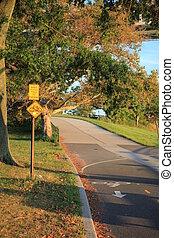 automne, couloir, vélo, brooklyn