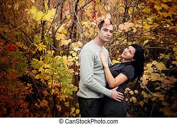 automne, couple, agréable, parc