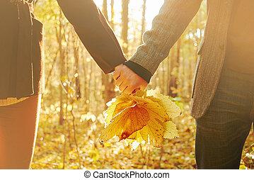 automne, couple, amour, feuilles