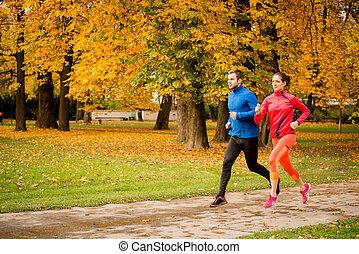 automne, couple, jogging, nature