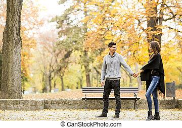 automne, couple, parc, aimer