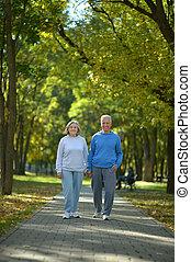 automne, couple, parc