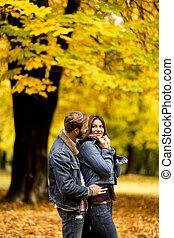 automne, couple, parc, jeune, aimer