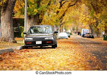 automne, couvert, feuilles, rue, jaune