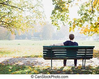 automne, délassant, pensée, parc, tourné, dos, jeune regarder, jour, homme