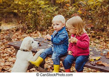 automne, doggy, parc, bébés
