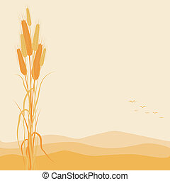 automne, doré, blé, fond, oreilles