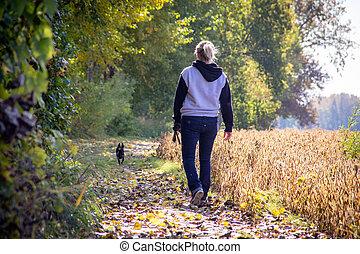 automne, elle, piste, marche, femme, chien