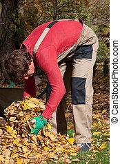 automne, emploi à temps partiel