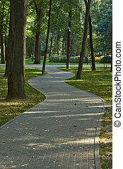 automne, enroulement, park., sentier